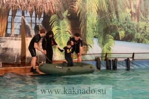 новый дельфинарий в москве
