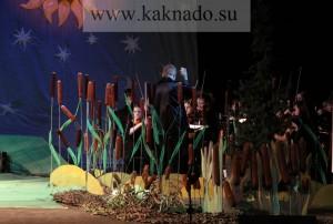 оркестр замаскирован камышами