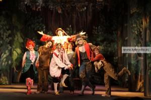 мюзикл бременские музыканты в театре стаса намина, фото, фотографии, отзывы