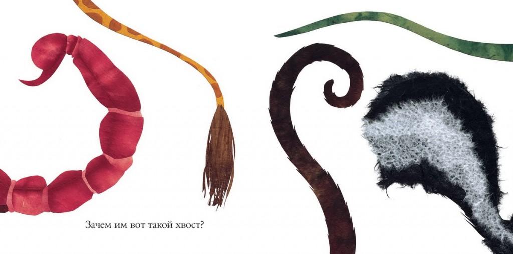 книга про хвосты, носы и уши, фотографии, отзывы