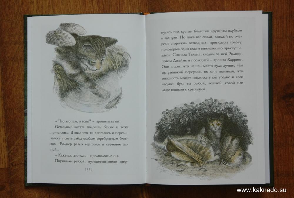 Крылатые кошки2