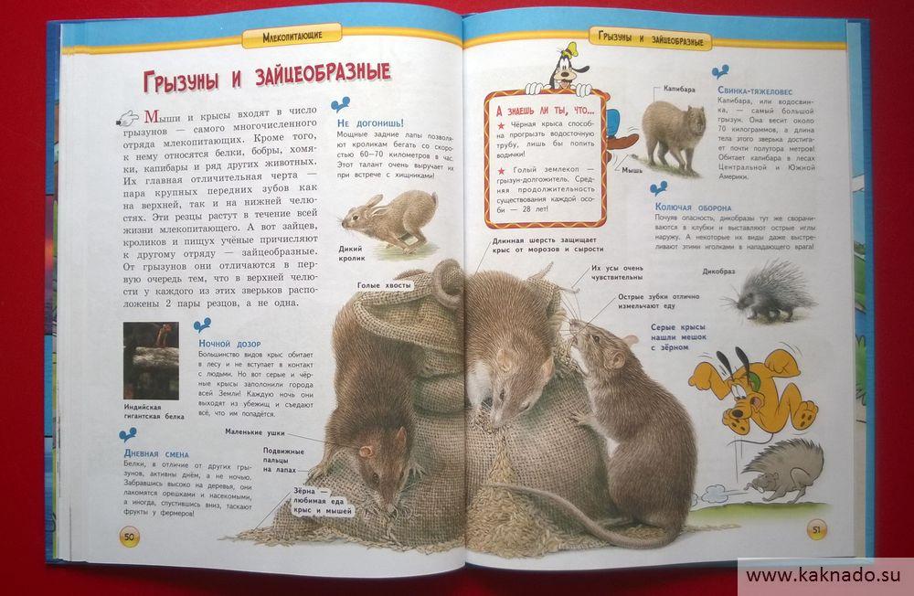 энциклопедия млекопитающие_15