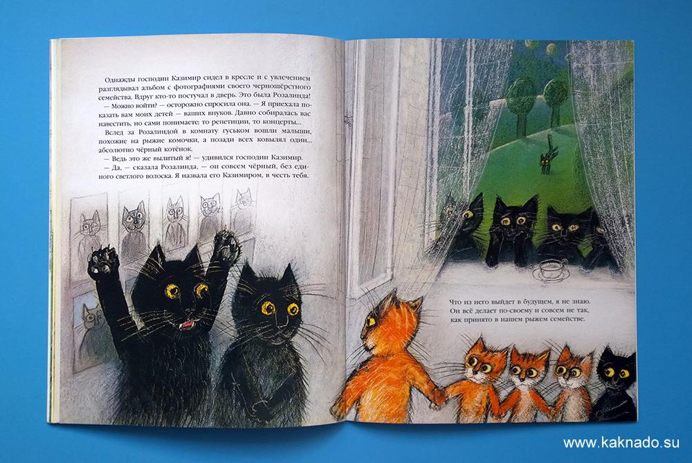 история про кошку Розалинду