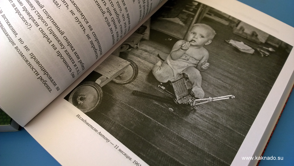книга о семье Никитиных