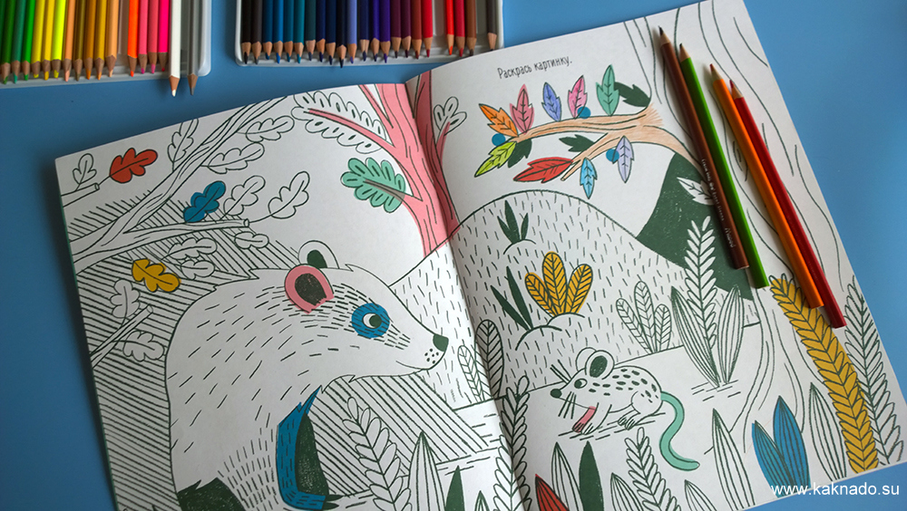 разноцветный лес