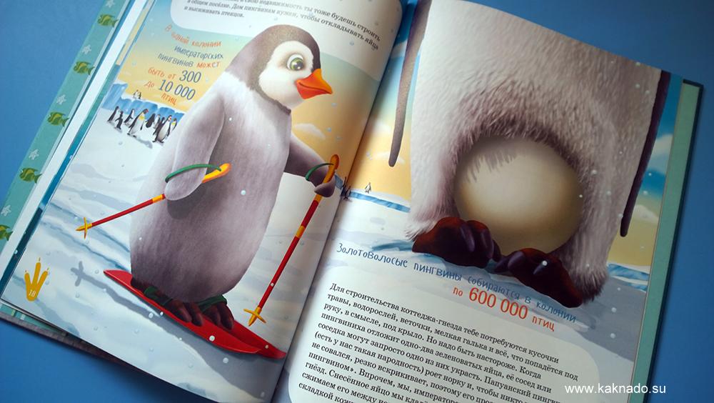 я пингвин