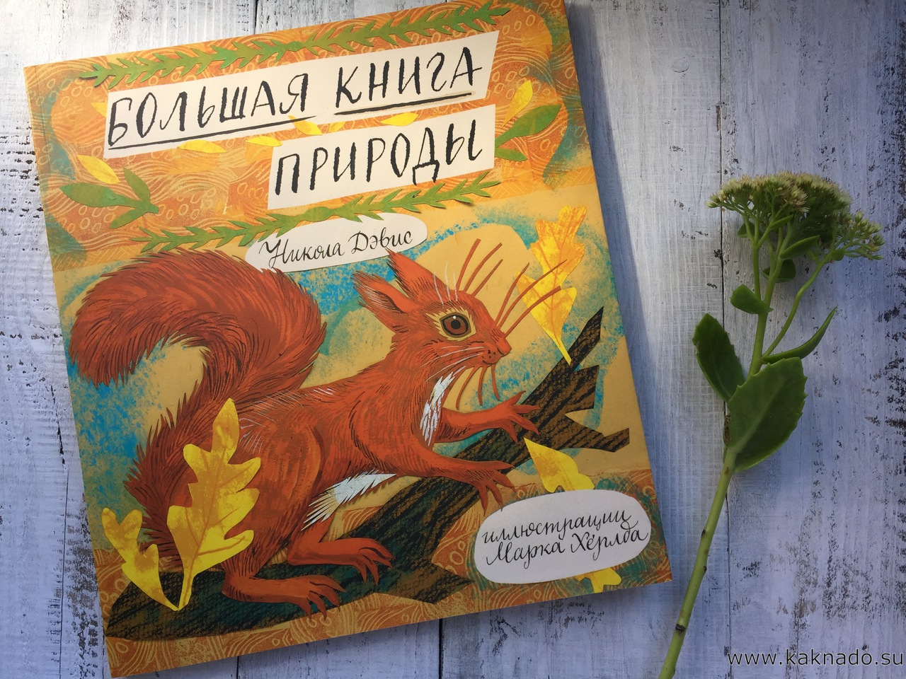 bolshaya-kniga-prirodyi_1