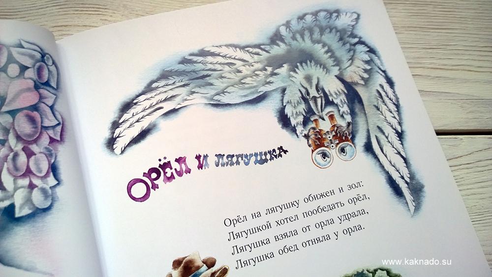 енот и опоссум 4
