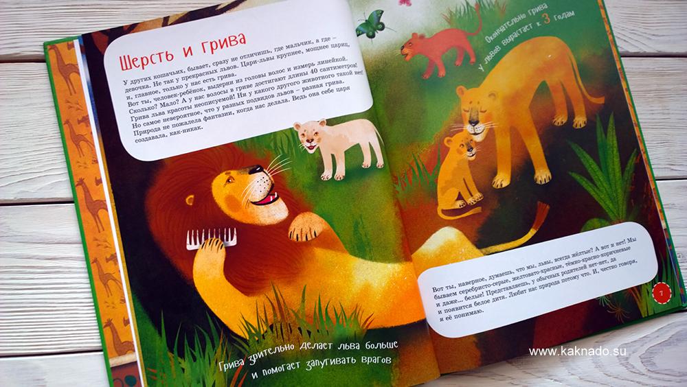 я лев 6