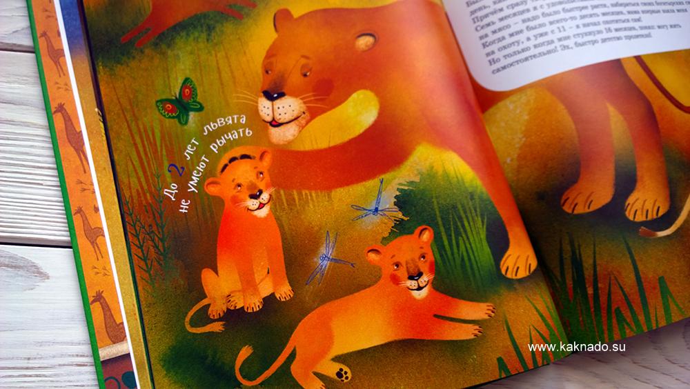 я лев 7