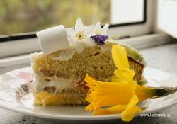 Торт с фруктами и взбитыми сливками