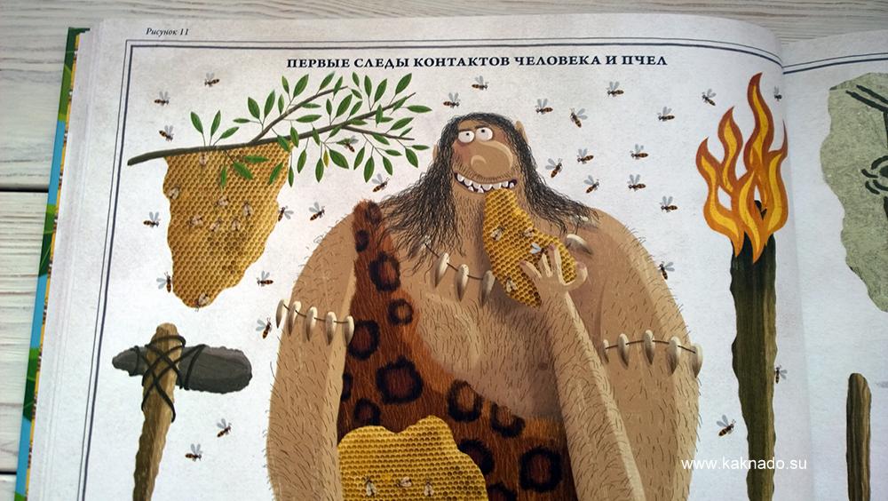 Петр Соха Пчелы 14