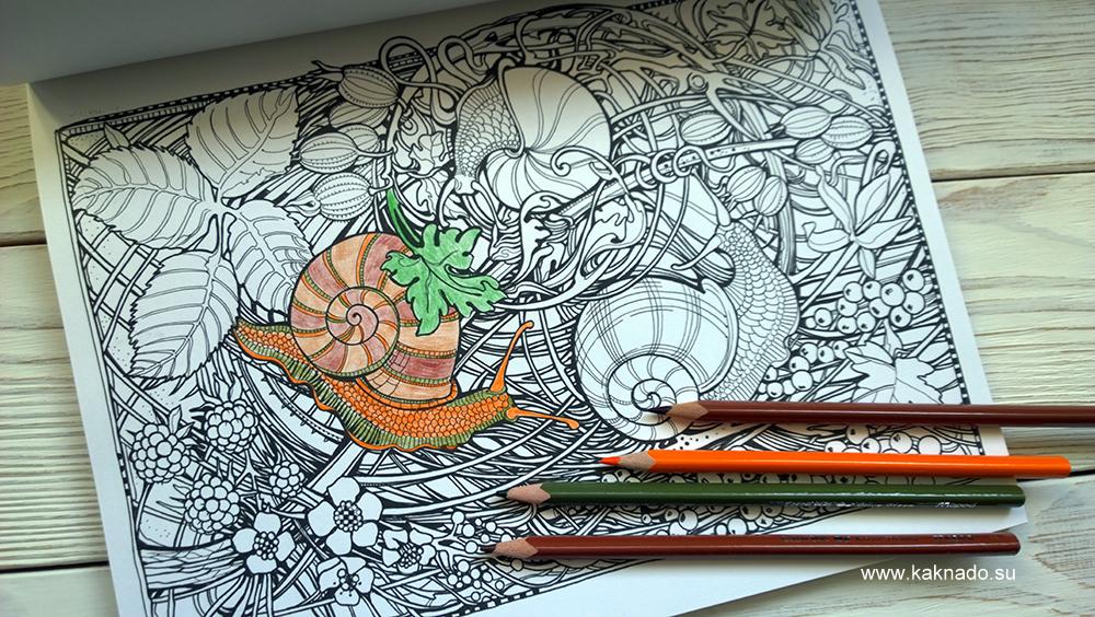 мания ботаника 8